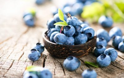 Why are blueberries good for you.